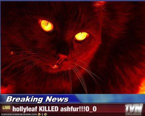 Breaking News - hollyleaf KILLED ashfur!!!O_O