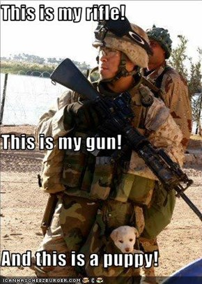 This is my rifle! This is my gun! And this is a puppy!