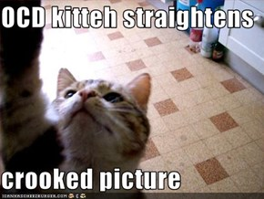 OCD kitteh straightens  crooked picture