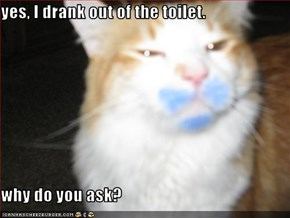 yes, I drank out of the toilet.  why do you ask?