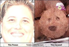 This Person Totally Looks Like This Coconut