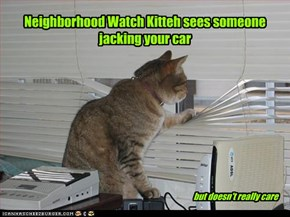 Neighborhood Watch Kitteh sees someone jacking your car