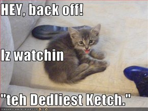"HEY, back off! Iz watchin ""teh Dedliest Ketch."""