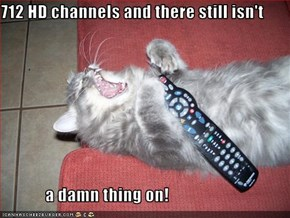 712 HD channels and there still isn't               a damn thing on!