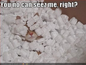 You no can seez me, right?