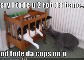 sry i tode u 2 rob da banc...  nd tode da cops on u