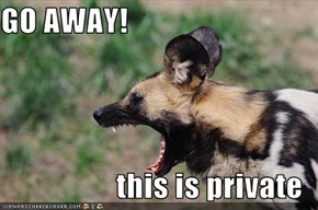 GO AWAY!  this is private