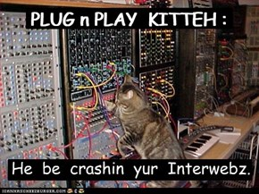 PLUG n PLAY  KITTEH :