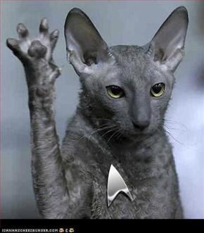 Live, LOL and Prosper . . . . .