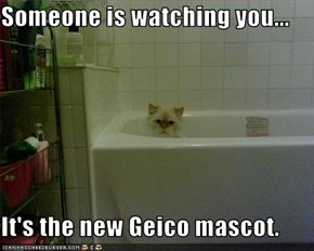 Someone is watching you...  It's the new Geico mascot.