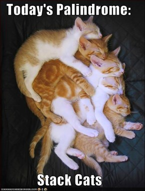 Today's Palindrome:  Stack Cats