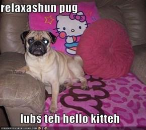 relaxashun pug  lubs teh hello kitteh