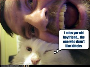I miss yur old boyfriend... the one who duzn't like kittehs.