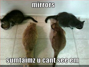 mirrors  sumtaimz u cant see em