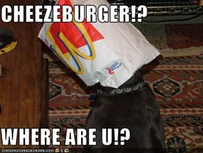CHEEZEBURGER!?  WHERE ARE U!?