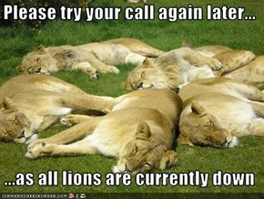 Please try your call again later...    ...as all lions are currently down