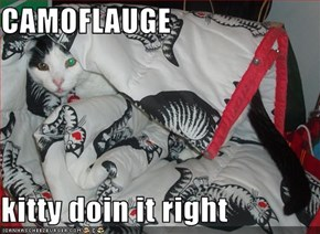 CAMOFLAUGE  kitty doin it right