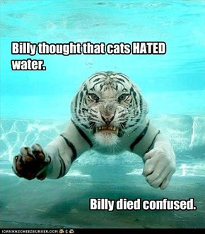 Billy died confused.