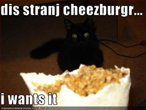 dis stranj cheezburgr...  i wants it