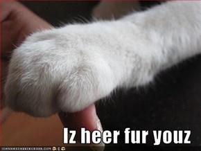 Iz heer fur youz