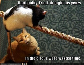 Until today, Frank thought his years  in the circus were wasted time.