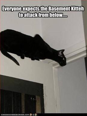 Everyone expects the Basement Kitteh to attack from below.....