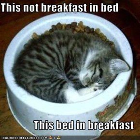 This not breakfast in bed  This bed in breakfast