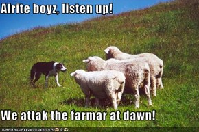 Alrite boyz, listen up!  We attak the farmar at dawn!
