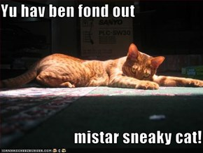 Yu hav ben fond out                         mistar sneaky cat!