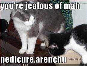 you're jealous of mah  pedicure,arenchu