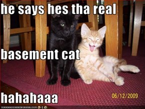he says hes tha real basement cat hahahaaa