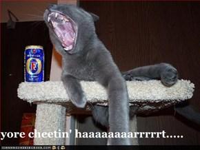 yore cheetin' haaaaaaaarrrrrt.....