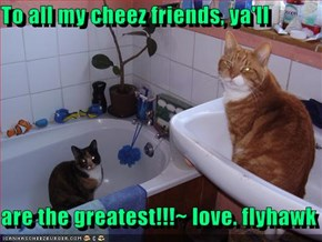 To all my cheez friends, ya'll  are the greatest!!!~ love. flyhawk