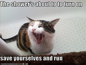 The shower's about to to turn on  save yourselves and run