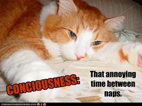 CONCIOUSNESS:
