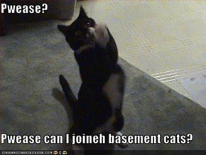 Pwease?  Pwease can I joineh basement cats?
