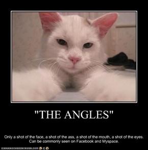 """THE ANGLES"""