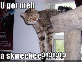 U got meh  a skweekee?!?!?!?