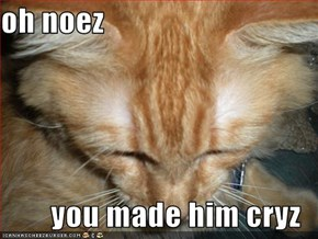 oh noez  you made him cryz