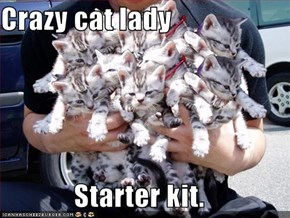 Crazy cat lady  Starter kit.
