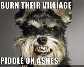 BURN THEIR VILLIAGE  PIDDLE ON ASHES