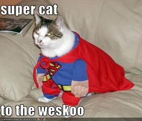 super cat  to the weskoo