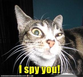 I spy you!