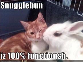 Snugglebun  iz 100% functionsh.