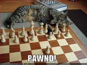 PAWND!