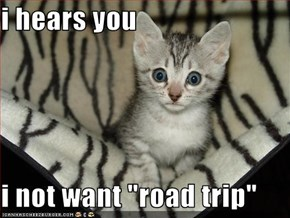 "i hears you  i not want ""road trip"""