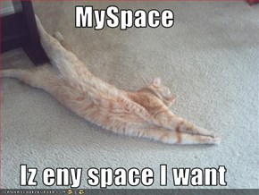 MySpace  Iz eny space I want
