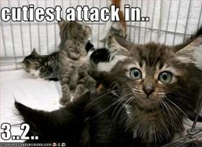 cutiest attack in..  3..2..