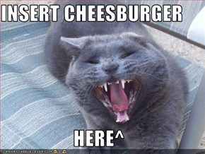INSERT CHEESBURGER  HERE^
