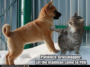 Patience, Grasshopper.   Let the mailman come to YOU.